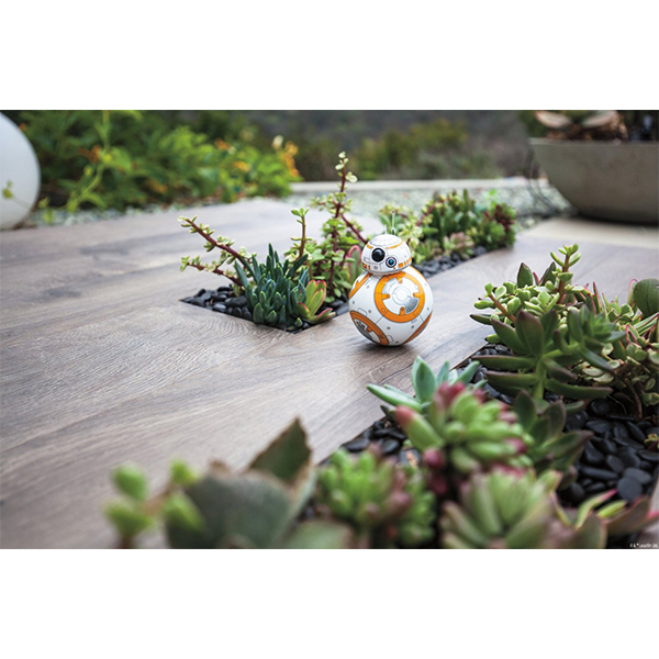 aMIS-46-SW-Droid-BB8-5