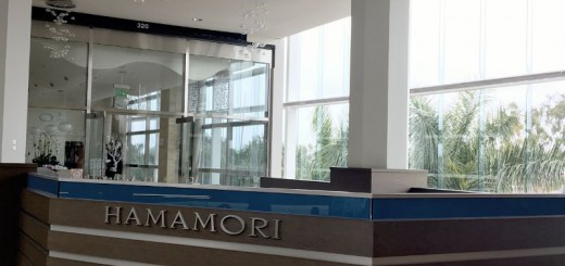 hamamori1